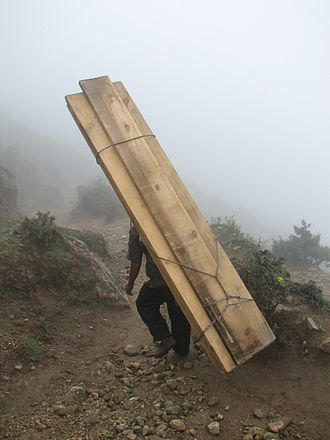 Porter (carrier) - Sherpa porter carrying lumber in the Himalayas, near Mount Everest (not a mountain climbing porter)