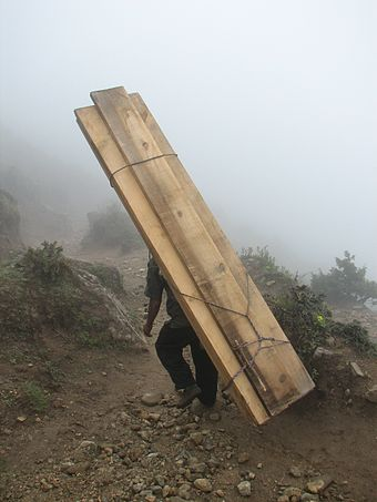 Human-powered transport remains common in developing countries. Sherpa carrying woods.JPG