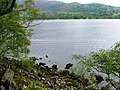 Shore, Ullswater - geograph.org.uk - 173205.jpg