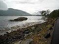Shoreline Near South Ballachulish - geograph.org.uk - 1389915.jpg