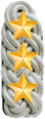 Shoulder board rank insigna for superintendent of japanese police.png