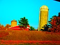 Silo with Yellow and White top - panoramio.jpg