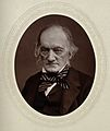 Sir Richard Owen. Photograph by Lock & Whitfield. Wellcome V0026948.jpg