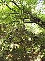 Sister's Fountain - geograph.org.uk - 1461260.jpg