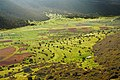 Skoteini-Alea-Polje Peloponnese Greece.jpg