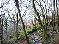 Slate stile on the Bedw Argoed footpath - geograph.org.uk - 320251.jpg