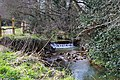 Small weir, Scrase Valley nature reserve - geograph.org.uk - 1752919.jpg