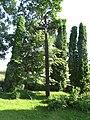 Smalvos 32400, Lithuania - panoramio (2).jpg
