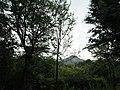 Snap from Bannerghatta National Park Bangalore 8531.JPG