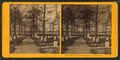 Soldiers' cemetery, Arlington, by Kilburn Brothers 5.png