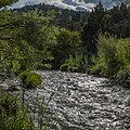 South Fork John Day Wild and Scenic River (35598967774).jpg