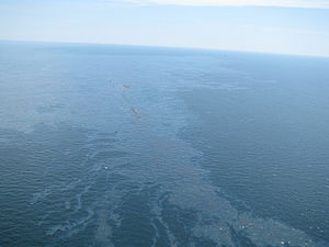 Debris and oil from the Deepwater Horizon dril...