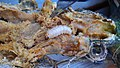 SquashVineBorer LarvalPhase ZuchiniPlant.jpg