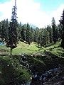 Srinagar - Pahalgam views 76.JPG