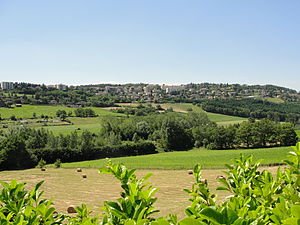 Saint-Genest-Lerpt - A general view of Saint-Genest-Lerpt