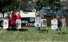 "A small group of people holding signs that feature captions like ""Animals suffer at the Calgary Stampede"" and ""Animal cruelty is not entertainment"""