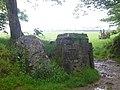 Standing stone^ - geograph.org.uk - 465273.jpg