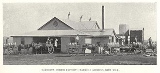Cambooya, Queensland - Farmers arriving with milk at the Cambooya Cheese Factory, ca. 1913