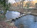Stepping stones on the River Browney - geograph.org.uk - 332275.jpg