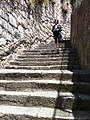 Steps (8907416662).jpg