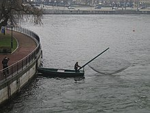 Stockholm-strom-fishing-with-net.jpg