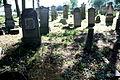 Stogi Malborskie Cmentarz Mennonitow 017.jpg