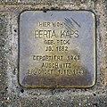 Stolperstein für Berta Kaps, Schweizer Strasse Ecke Kaitzer Strasse, Dresden (1).JPG