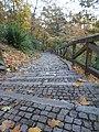 Stone pathway in Petrin.jpg