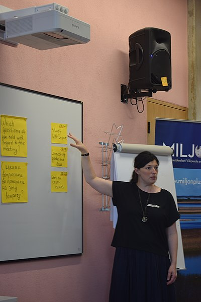 Strategy Salon 2019 (Wikimedians of Russian languages) 02.jpg