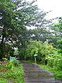 Sungei Buloh Wetland Reserve gateway.jpg