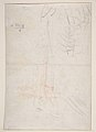 Susanna and the Elders (recto); Architectural design and other scribbles (verso) MET DP811083.jpg