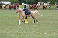 Swiss Pony Games 2011 - Finals - 067.JPG