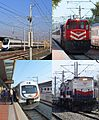 TCDD Collage.JPG