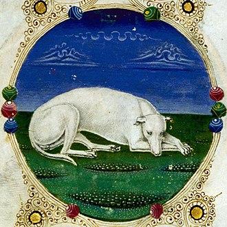 Borso d'Este Bible - Image: Taddeo crivelli, bibbia di borso d'este 03