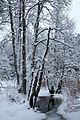 Tarvasjõgi talvel.jpg