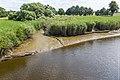 Technisch-biologische Ufersicherung an der Wümme, Versuchsstrecke 1 (50677959468).jpg