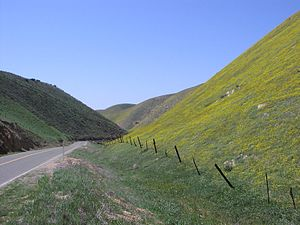 Temblor Range - Temblor Mountains in spring; view from near State Route 58 summit