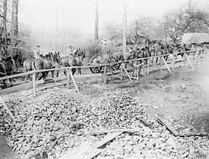 1st Lancashire Engineers - RE cable waggons on the Western Front