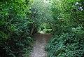 The Greensand Way, Scords Wood - geograph.org.uk - 1499247.jpg