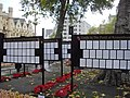 The Guides to the Field of Remembrance Westminster Abbey - geograph.org.uk - 1575001.jpg