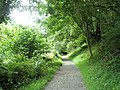 The Heddon's Path approaching Harry's Orchard - geograph.org.uk - 917656.jpg