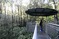The Treetop Walk - Enjoying the forest from 30m high (19389569091).jpg