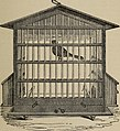 The natural history of cage birds - their management, habits, food, diseases, treatment, breeding, and the methods of catching them (1888) (14769530733).jpg
