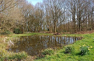 Trimpley - Image: The village pond at Trimpley (1), Worcs (geograph 3909840)