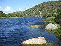 Tidel River (3112029293).jpg
