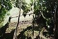 Tikal (9791249156).jpg