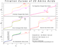 Titration Curves of 20 Amino Acids Organized by Side Chain.png