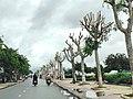 Tl 954, duong Tran Hung Dao,xa Long Chau,Tx Tanchau, Angiang, vn,06-10-2013 - panoramio.jpg