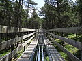 Tobotronc (Naturlandia, Andorra) 05 pujant.JPG