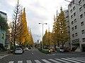 Tokyo Route 418 -01.jpg
